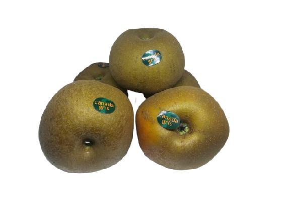manzanas tabardilla