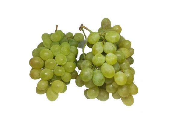 uvas blancas alicante