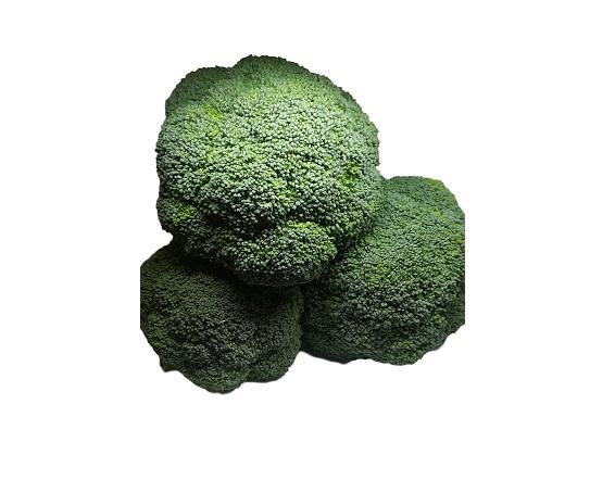 brócolli